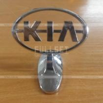 Логотип на капот